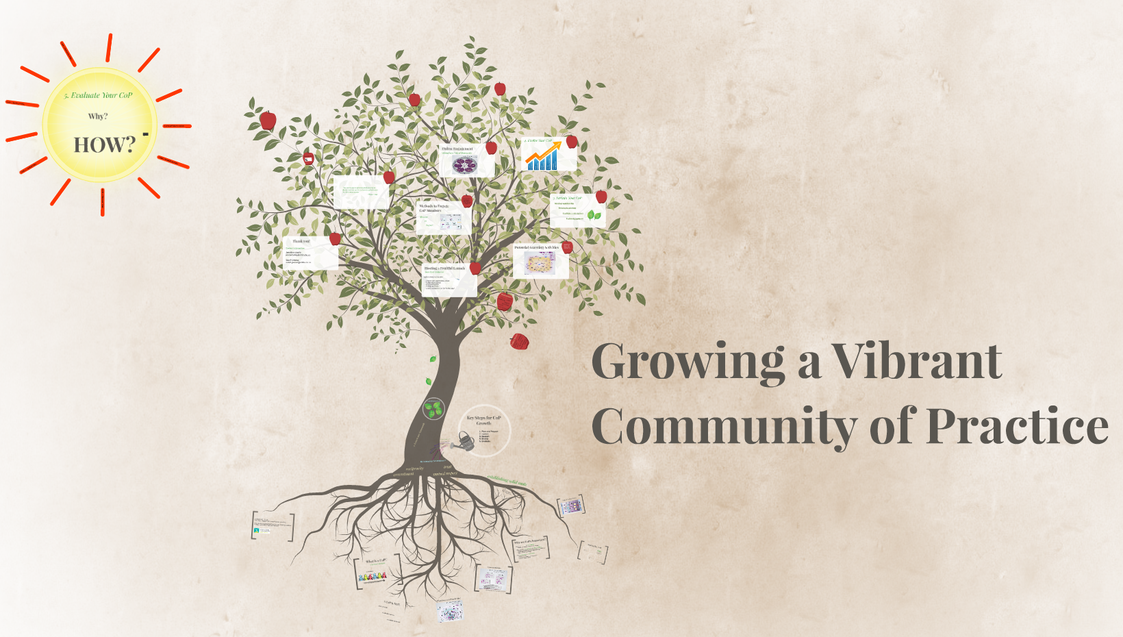 growing a vibrant commnity of practice