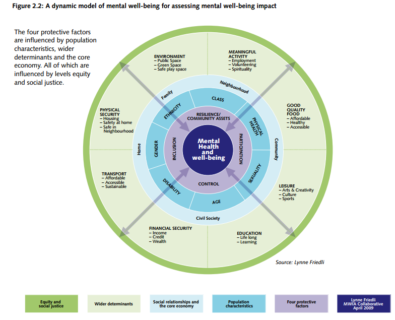 model for assessing mental well being impact